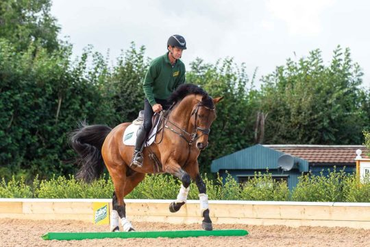 How three poles can help your horses adjustability with Chris Burton