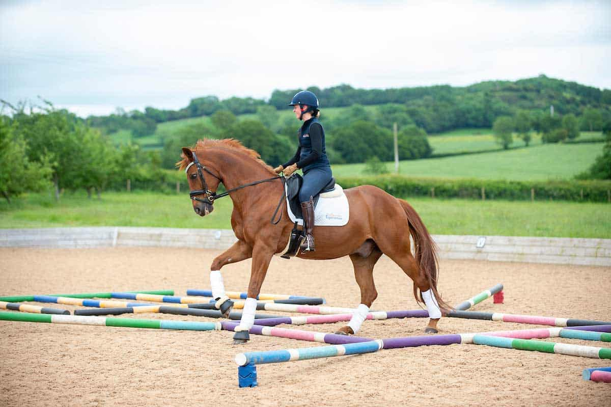 Five Creative Pole Work Exercises Horse And Rider