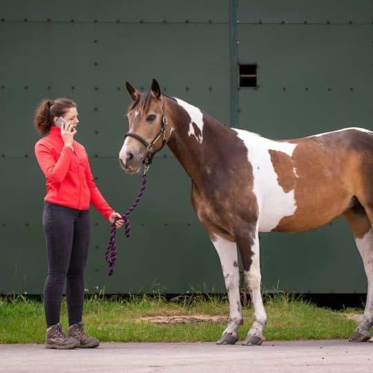 Girl on phone holding horse