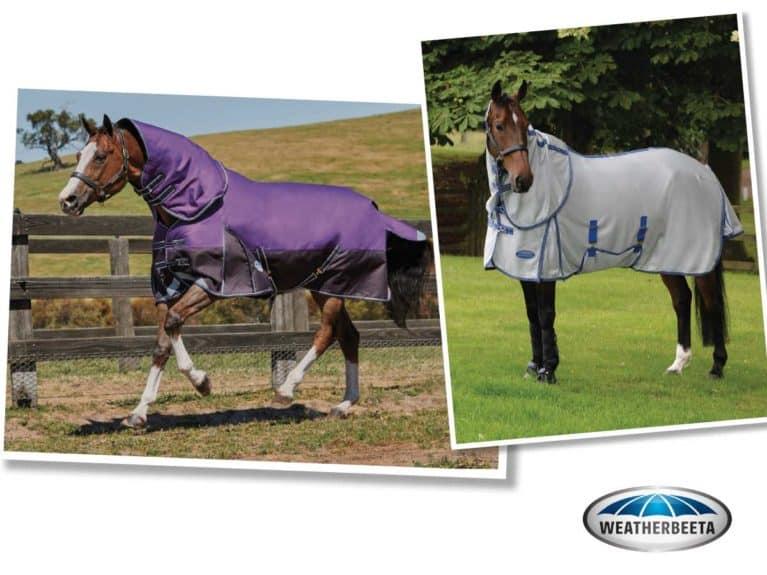Weatherbeeta rug bundle competition