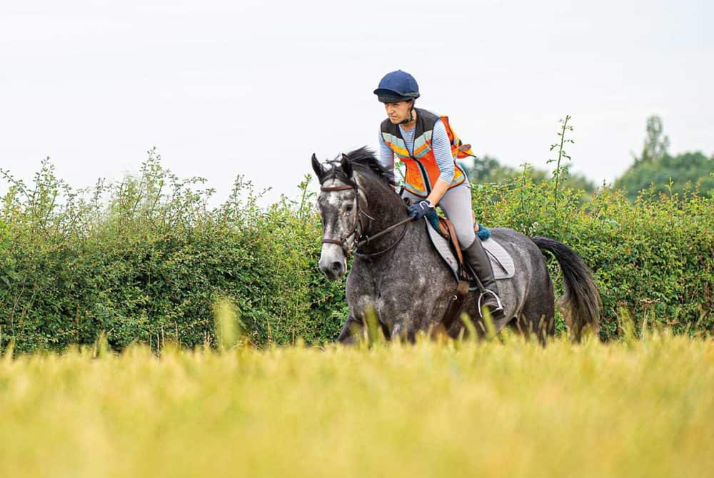 Interval training for your horse