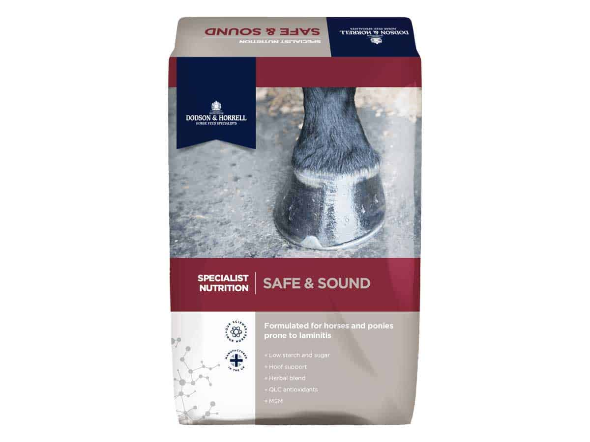 Dodson & Horrell Safe and Sound