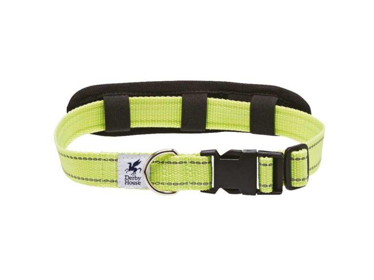 Derby House Pro reflective dog collar