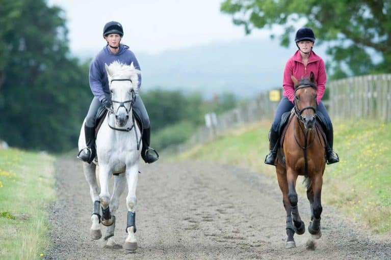 Two horses at the gallops