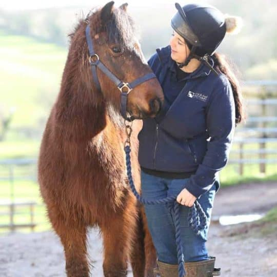 Mare and Foal sanctuary