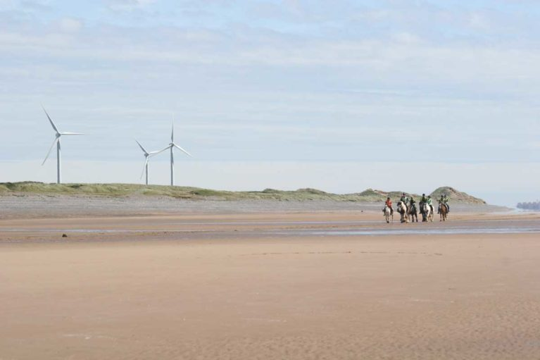 Group of horse riders on the beach