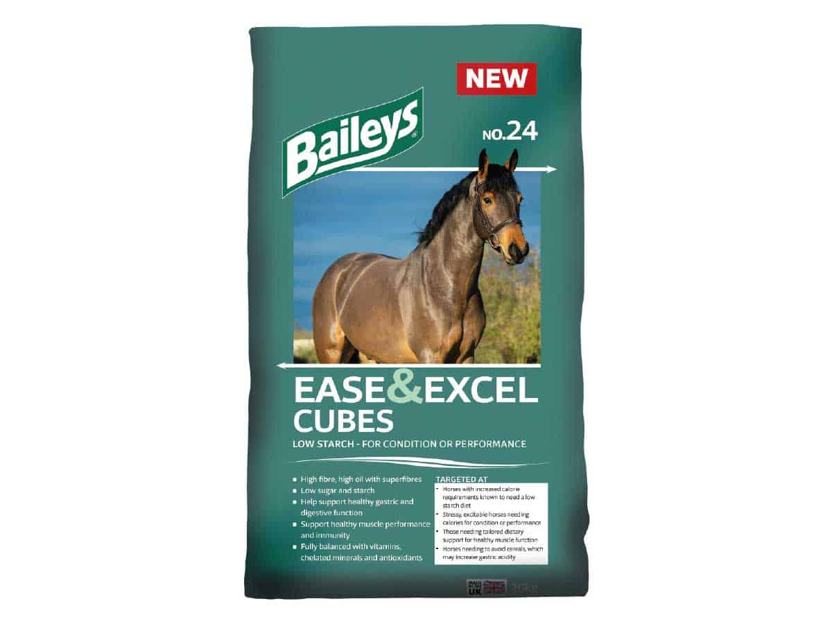 Baileys Ease and Excel Cubes