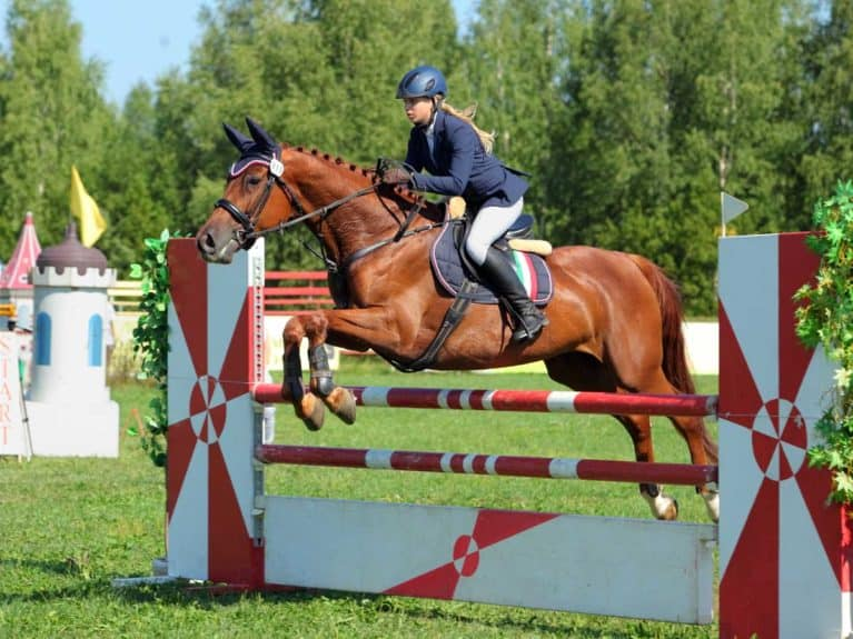 Girl in a showjumping competition