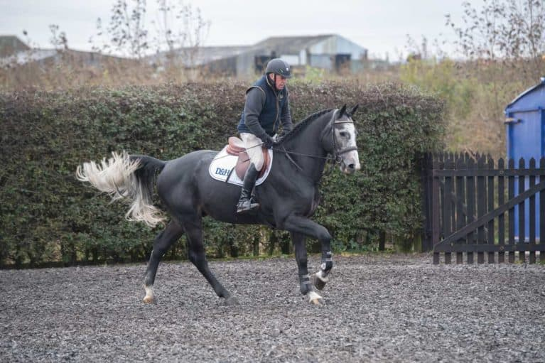 Schooling exercises from John Whitaker