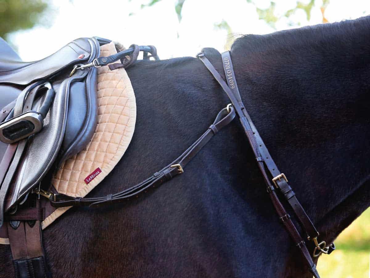 Salute Equestrian Click and Connect neckstrap