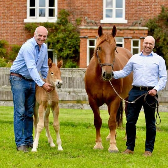 Tullis Matson with the foal and Dr Gareth Starbuck with Ruby