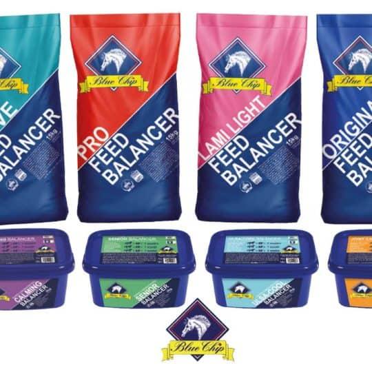 Blue Chip balancer competition