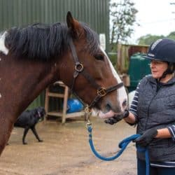 Coping in an equine emergency