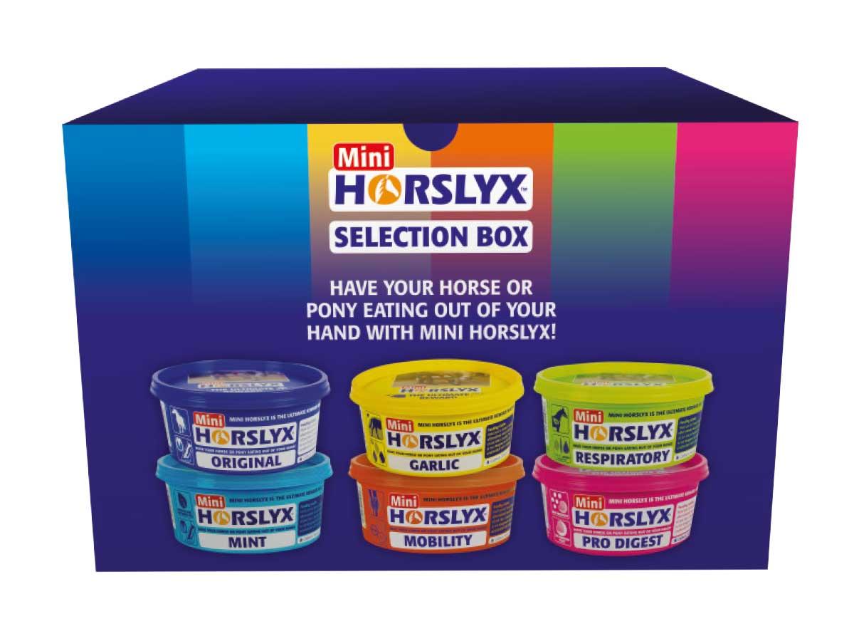 Horslyx selection box