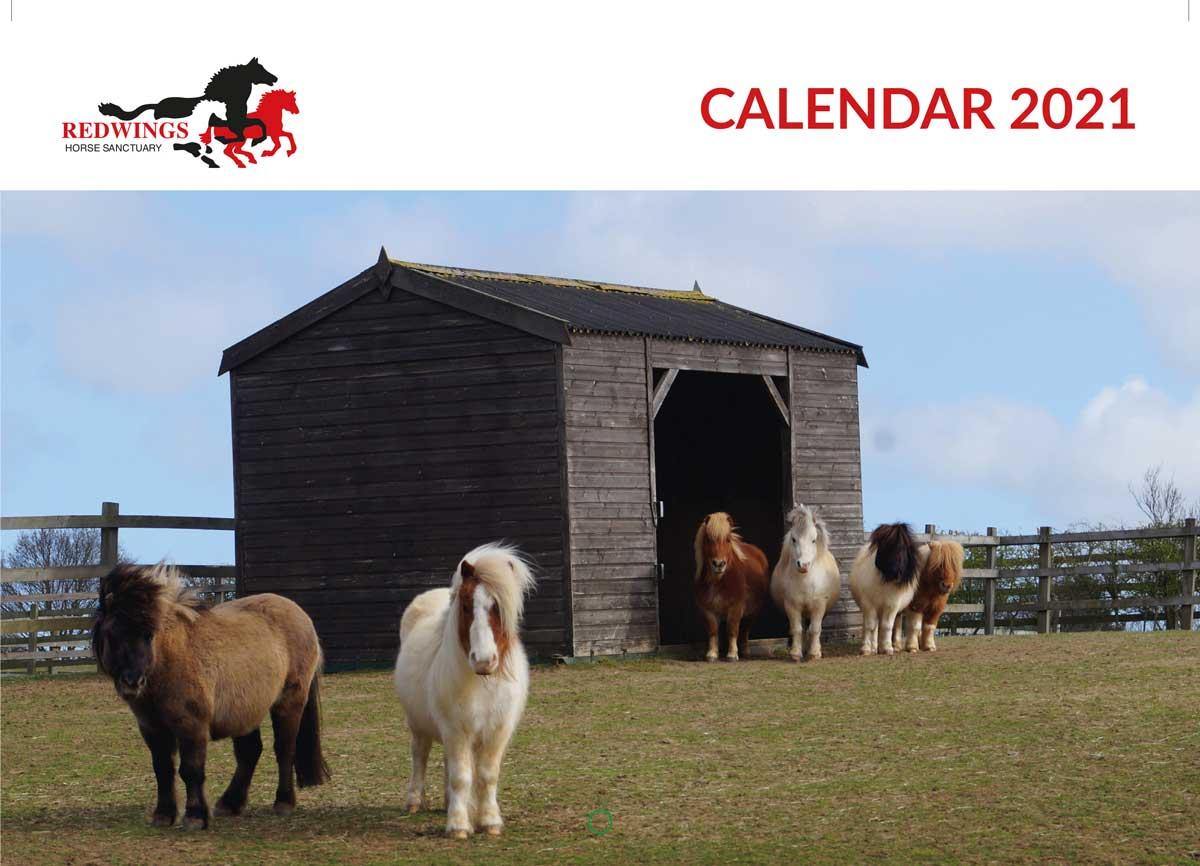 Redwings 2021 calendar