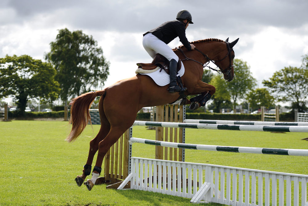 Mare competing