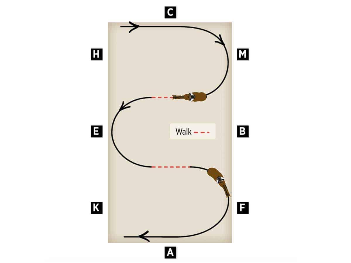 Impulsion schooling exercise diagram