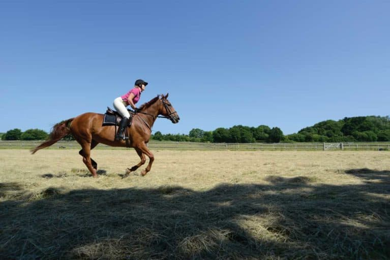 Cantering out on hack for fitness
