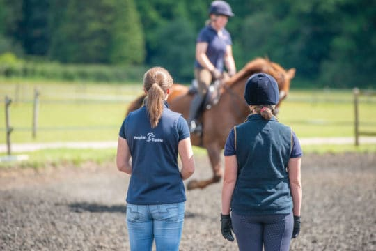 Perfect partners - meeting your perfect horse match