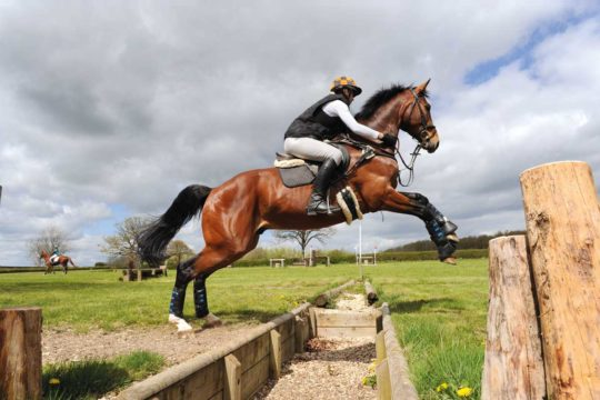Horse and rider jumping a ditch