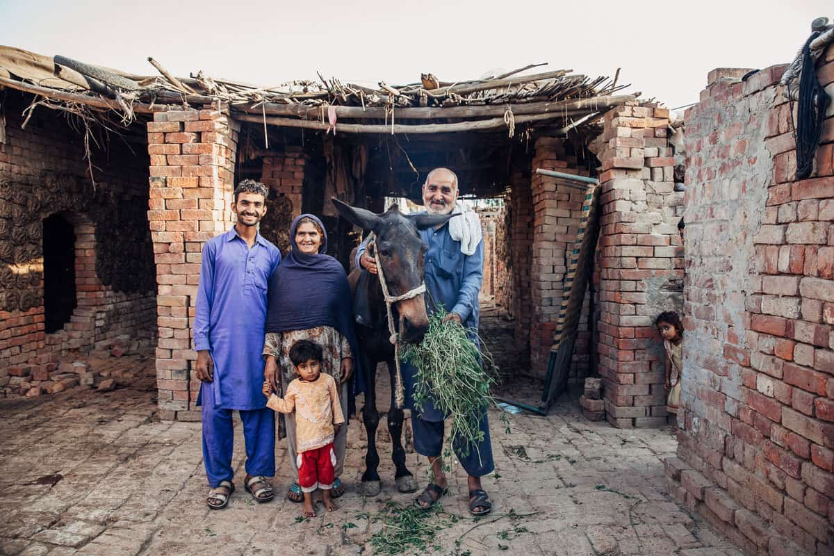 Nepal's equine owners receive charitable support following glanders outbreak