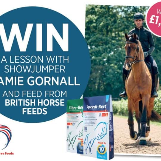 WIN-British_Horse_Feeds